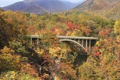 Autumn Colors av Naruko-klyftan i Japan Arkivfoto