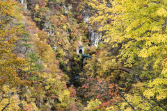 Autumn Colors av Naruko-klyftan i Japan Royaltyfria Bilder