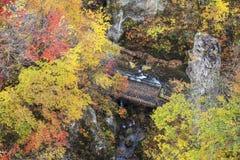 Autumn Colors av Naruko-klyftan i Japan Royaltyfri Foto