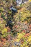 Autumn Colors av Naruko-klyftan i Japan Royaltyfria Foton