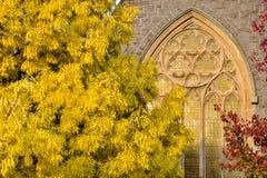Autumn colors in Ballarat. Australia Landscape : Autumn colors in Ballarat Stock Image