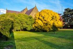 Autumn colors in Ballarat. Australia Landscape : Autumn colors in Ballarat Royalty Free Stock Images