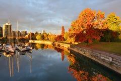 Autumn Colors bara som havet går i Stanley Park, Vancouver Arkivbild