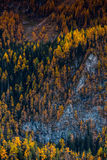 Autumn colors on Bavarian peaks. Hiking on the Bavarian mountains in the autumn is more then a visual pleasure, is a paradise Royalty Free Stock Images