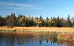 Autumn Colors at Black Pond Royalty Free Stock Images