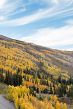 Autumn Colors and Blue Skies on Alpine Slopes Stock Photos