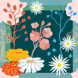 Autumn Colors Bufanda de seda con las flores florecientes de la fantasía Imagen de archivo libre de regalías