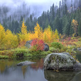 Autumn Colors By The Calm Water. Stock Photo