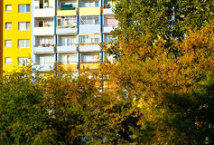 Autumn colors in the city. Royalty Free Stock Photography