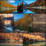 Autumn colors collage. Autumn colors, mountain and glares collage Stock Image