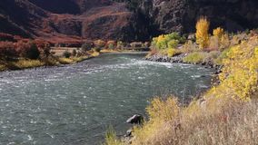 Autumn colors on Colorado River