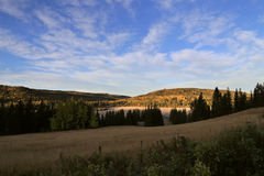 Autumn Colors Cypress Hills Canada Royaltyfria Foton