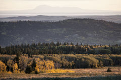 Autumn Colors Cypress Hills Canada Royalty Free Stock Photos