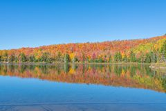 Autumn Colors Dance On The-Oberfläche von einem Teich Lizenzfreie Stockbilder