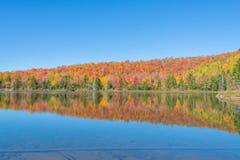 Autumn Colors Dance On The-Oppervlakte van een Vijver Royalty-vrije Stock Afbeeldingen
