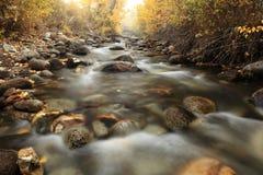 Autumn Colors de crique de McGee, la Californie Photographie stock libre de droits