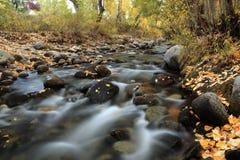 Autumn Colors dell'insenatura di McGee, California Fotografie Stock Libere da Diritti