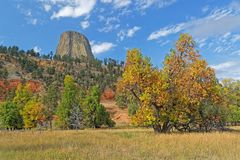 Autumn colors in the Devils Tower park stock photo