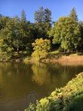 Autumn colors. Dutch nature near Apenheul royalty free stock image
