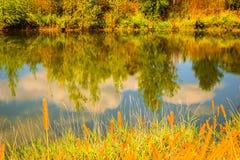 Autumn Colors en Bezinningen Royalty-vrije Stock Afbeeldingen