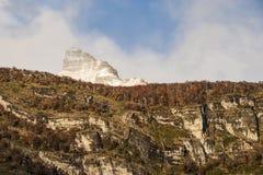 Autumn Colors en Patagonia imagen de archivo