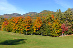 Autumn colors - fall leaves in the Adirondacks, New York. State, USA Royalty Free Stock Images