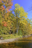 Autumn colors - fall leaves in the Adirondacks, New York. State, USA Royalty Free Stock Photos