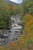 Autumn colors - fall leaves in the Adirondacks, New York. State, USA Stock Image