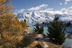 Autumn colors and fresh snow on Lake Pukaki, New Zealand royalty free stock photo