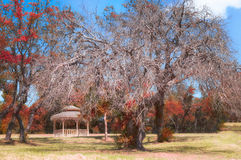 Autumn Colors. A gazebo surrounded by colorful fall foliage Stock Photography
