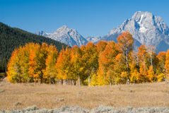 Autumn colors at Grand Tetons Stock Photos
