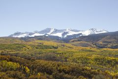 Autumn Colors in Gunnison National Forest, Colorado stock images