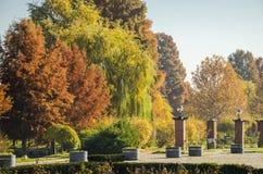 Autumn colors. In Herastrau Park, Bucharest, Romania Stock Photography