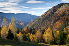 Autumn colors. Hills in the autumn light. Piatra Craiului mountains in Romania Stock Photo