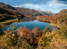 Autumn Colors i Bariloche, Patagonia, Arge Royaltyfria Foton