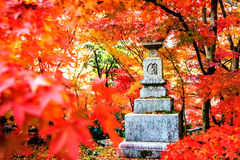 Autumn Colors i den Eikando templet, Kyoto, Kansai, Japan Royaltyfri Fotografi