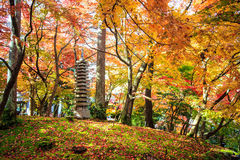 Autumn Colors i den Eikando templet, Kyoto, Kansai, Japan Arkivbilder