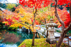 Autumn Colors i den Eikando templet, Kyoto, Kansai, Japan Arkivfoto