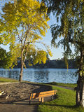 Autumn Colors In Blue Lake Park Oregon. Royalty Free Stock Photos