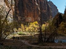 Hikers along the Virgin River in Zion Royalty Free Stock Images