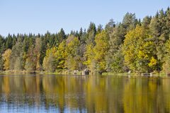 Autumn colors in the lake Stock Image
