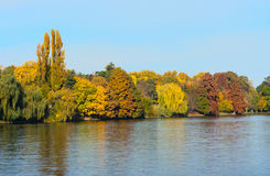Autumn colors on the lake royalty free stock images