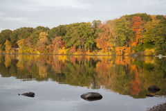 Autumn colors at the lake Royalty Free Stock Photos