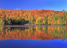 Autumn colors on the lake, Mont Tremblant area, Quebec. Canada Royalty Free Stock Photography