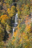 The Autumn Colors Of Letchworth State Park Royalty Free Stock Image