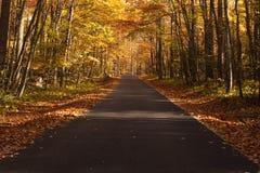 Autumn colors line a road Stock Photo