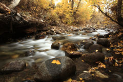 Autumn Colors of McGee Creek, California Stock Photos