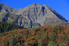 Autumn colors with mount Timpangos. Stock Photos