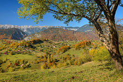 Autumn Colors in Mountain Area. Alpine landscape with autumnal colors over the Magura village and Piatra Craiului mountains in background. Early fall, near stock image