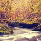 Autumn colors at mountain river banks. Fresh green mossy boulders on river banks Stock Image